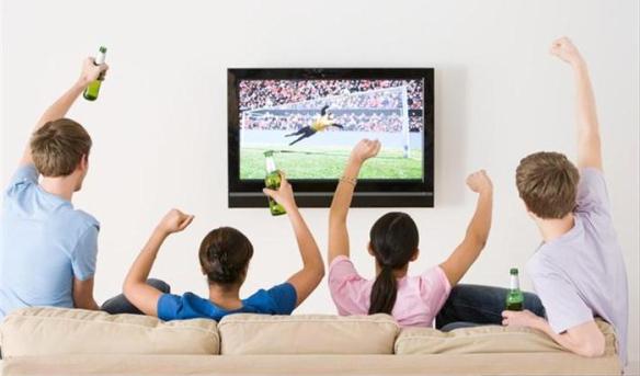 Sofa y television